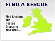 Find a rescue elsewhere
